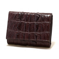 Purse crocodile (cru-21200 Brown)