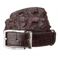 Belt men's CROCODILE LEATHER 18178 genuine leather crocodile Brown