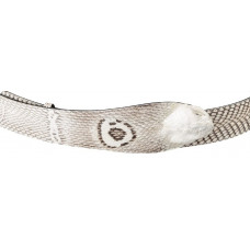 Belt SNAKE LEATHER 18199 genuine leather Cobra White