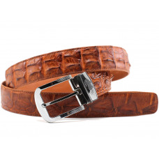 Belt crocodile (105 ALB-2)
